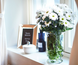 daisies, decor, and flowers image