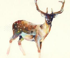 deer, socks, and art image