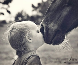 horse, baby, and kiss image