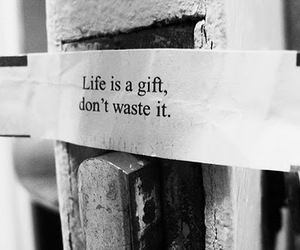 life, quote, and gift image