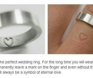 rings, wedding, and love image