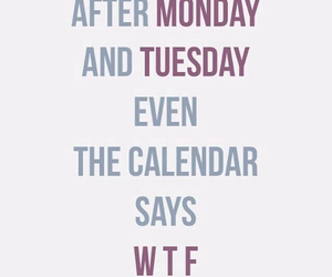 wtf, calendar, and funny image