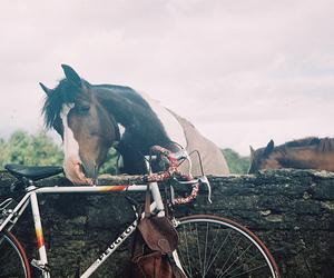 horse, bike, and cute image