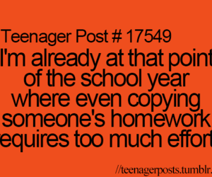 school, homework, and teenager post image