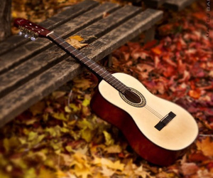 autumn, guitar, and music image