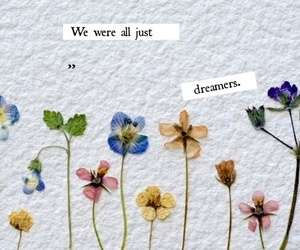 flowers, dreamer, and quote image