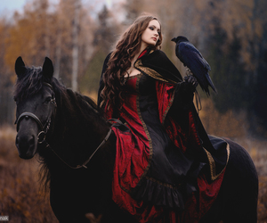 horse, raven, and black image