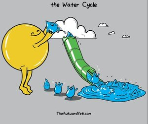 water, sun, and funny image