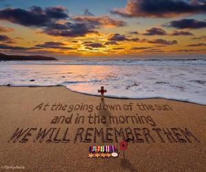 brave, remembrance day, and soldiers image