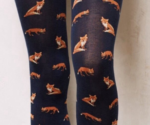 fox, fashion, and tights image
