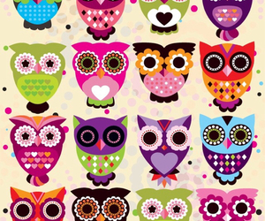 beautiful, owl, and cocoppa image