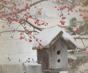 snow, winter, and birdhouse image