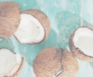 coconut and header image