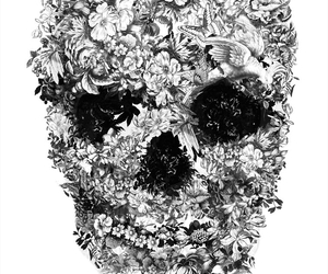skull, flowers, and black image