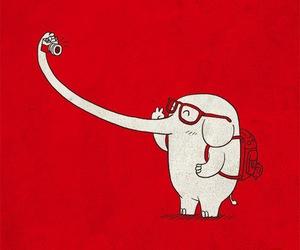 elephant, selfie, and photo image