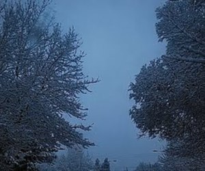 cold, dark blue, and snow image