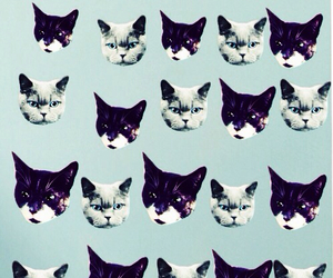 background, cats, and patterns image