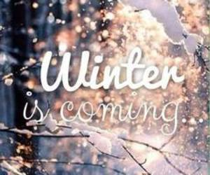 winter, snow, and coming image