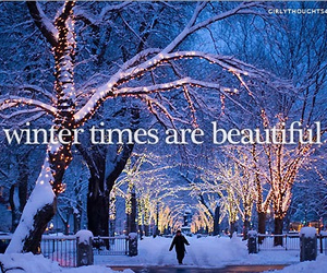 winter, snow, and beautiful image