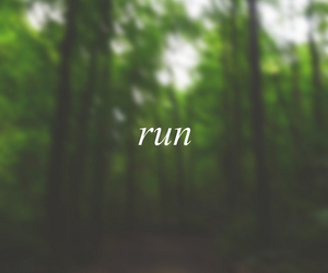 run, forest, and green image