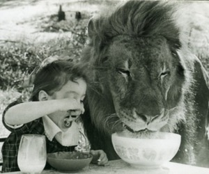 lion, child, and black and white image