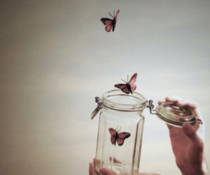 fun, sky, and butterfly's image