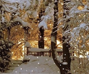 quality, o, and snow image