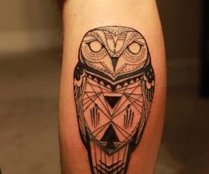 owl and tattoo image