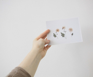 flowers, indie, and pale image