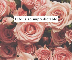 life, flowers, and pink image
