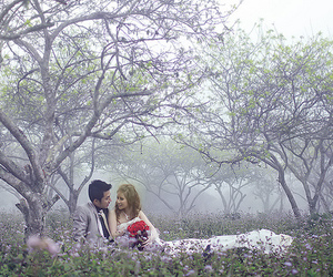 trees, wedding, and love image