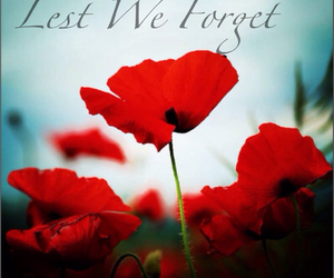 remember, remembrance day, and lest we forget image