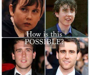harry potter, Hot, and neville longbottom image