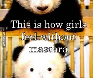 panda, girl, and mascara image