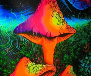 colours, mushroom, and psy image