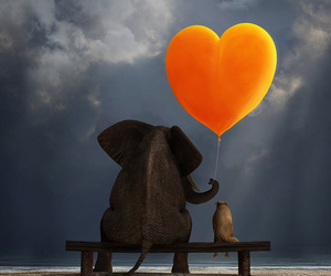 elephant, friendship, and cute image