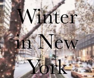 winter, new york, and christmas image