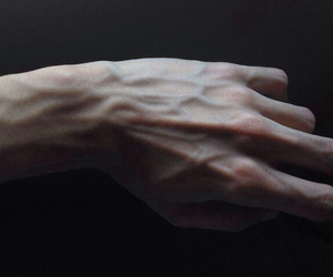 arm, blood, and veins image