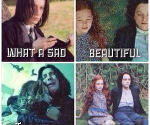 always, beautiful, and harry potter image
