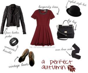 autumn, burgundy, and dress image