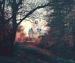 beautiful, photography, and castle image