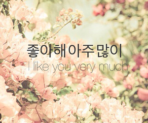 hangul, inspire, and lovequotes image