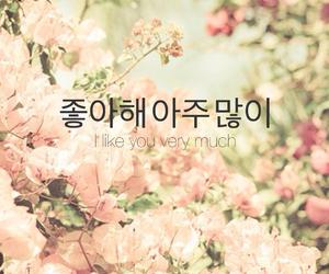 hangul, inspire, and seoul image