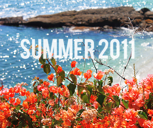 summer, 2011, and flowers image
