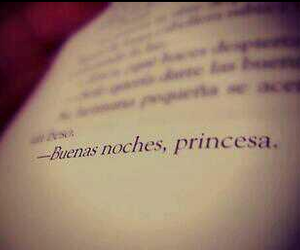 princess, love, and book image