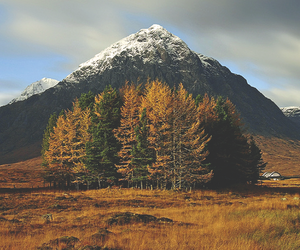 autumn, landscape, and fall image