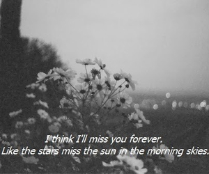 forever, miss, and love image