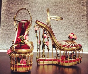 Dolce & Gabbana, fashion, and shoes image