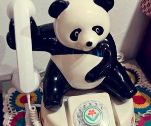 panda, white, and cute image