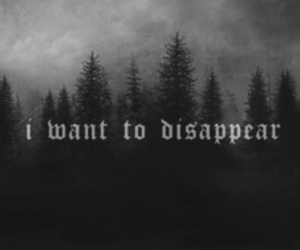 b&w, disappear, and trees image